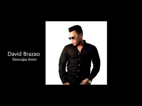 David Brazao - Desculpa Amor