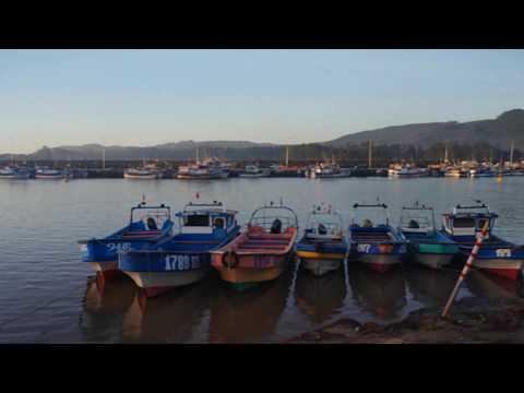 Video En 4K Camara Trasera Lg G7 Fit En Español