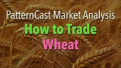 How To Trade Wheat - PatternCast Market Analysis
