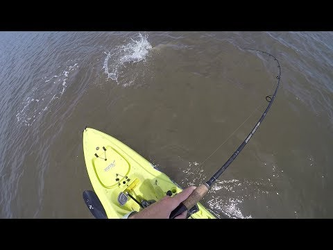 Exploring Palm Coast, Fishing For Redfish Or Trout