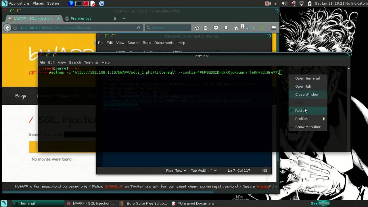 BWAPP - Burp Suite and Sqlmap