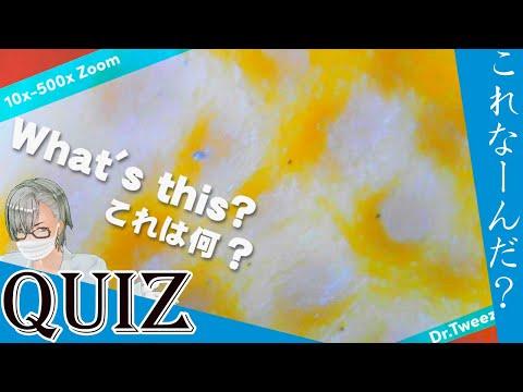 9001 [200x Zoom] QUIZ What is this? クイズ これ何だ? Dr. tweezers 毛抜き先生の角栓や毛根