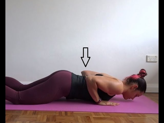 Triceps pushup setup