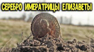Случайная встреча с животными на копе Находки металлоискателем в урочище Нашел монету Елизаветы 1