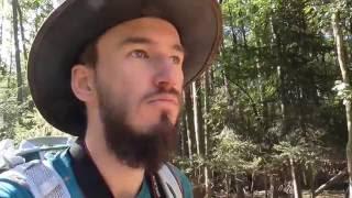 buszmen na tropie jeleniada
