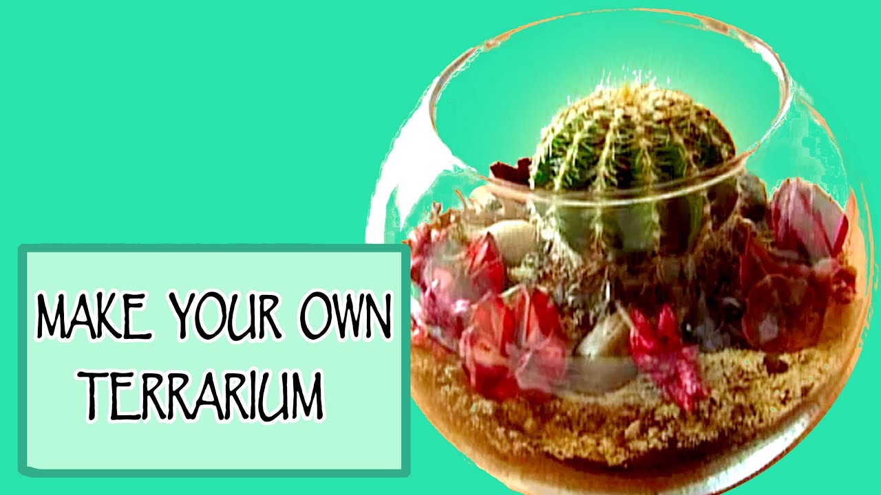 Diy room decor make your own terrarium youtube - Create your own room ...