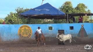 Disputa Amador / II Grande Vaquejada Parque Alô Brasil, Lajea…