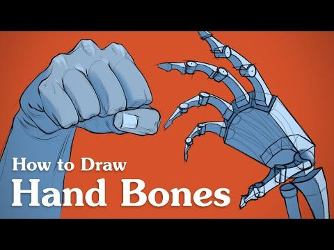 How to Draw Hand Bones - Drawing Anatomy for Artists