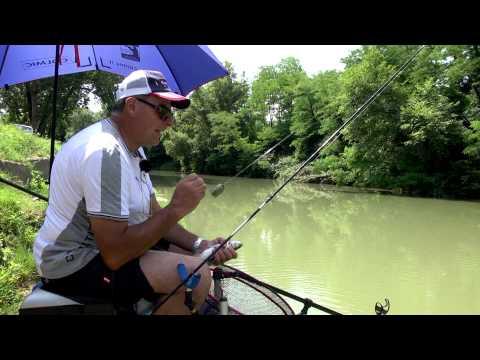 Italian Fishing TV - Colmic - Feeder sul Tevere