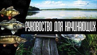 Російська Рибалка 4. Гайд для новачків #1 | Russian Fishing 4 Guide.
