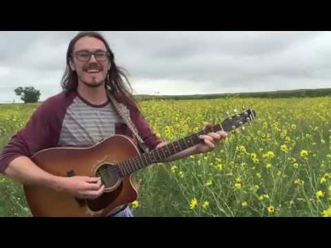 Andy Babb Singing With The Sunflowers