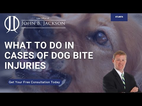 Atlanta Dog Bite Lawyer