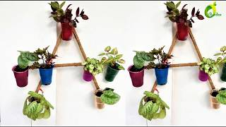 use &throw cups planter/waste cups ideas//ORGANIC GARDEN
