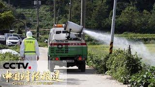 [中国财经报道] 韩国出现首例非洲猪瘟疫情 今日将扑杀近4000头猪 | CCTV财经