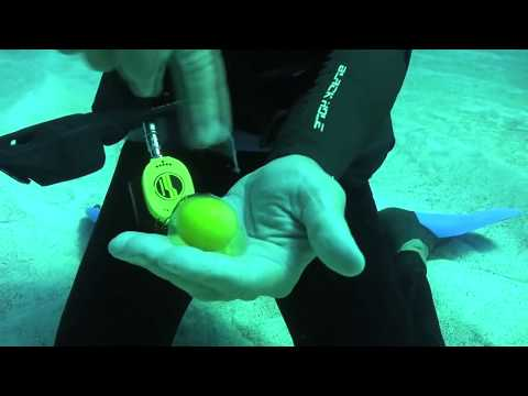 What Happens When You Crack An Egg Underwater? | Video