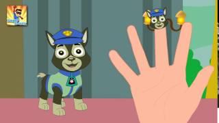 Finger Family Paw Patrol Finger Family   Finger Family Songs   Finger Family Parody