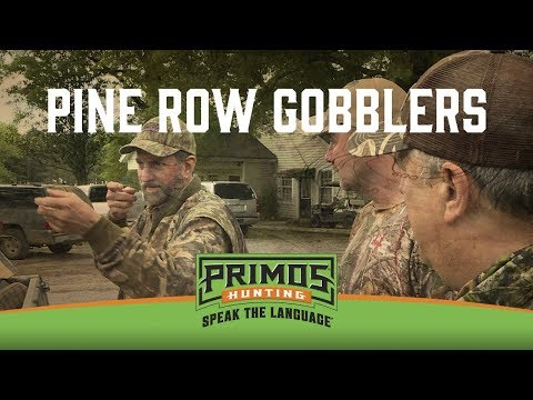 Pine Row Gobblers
