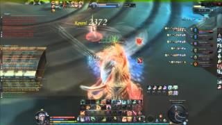 Aion 4.5 Gladiator PvP Waga