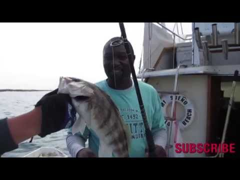 Dan Hernandez on Private Charter Fishing Report 25th June | SPORT FISHING