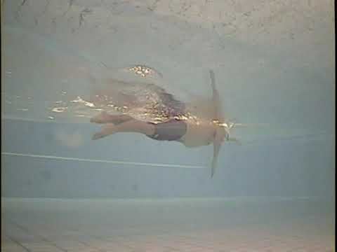 The Most Graceful Freestyle Swimming by Shinji Takeuchi