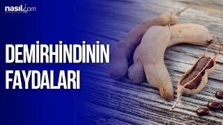Demirhindi'nin Faydaları | Sağlık | Nasil.com