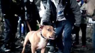 NOVA feat EKINOXX - Jamhaitian - Lil Ghost - Tru tha Lyricist ( LIGHT IT UP )