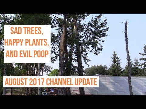 Sad Trees, Happy Plants and Evil Poop: August 2017 Channel Update