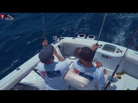 Fishing In Cabo San Lucas May 2019