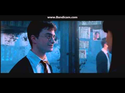 Harry Potter 5  Harry and Cho Moment
