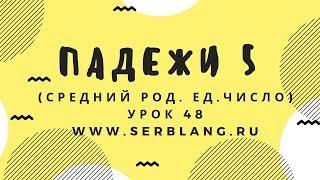 Сербский язык. Урок 48. Средний род ед. число