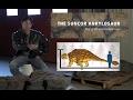 Discovery of Ankylosaur at Suncor's Millennium Mine