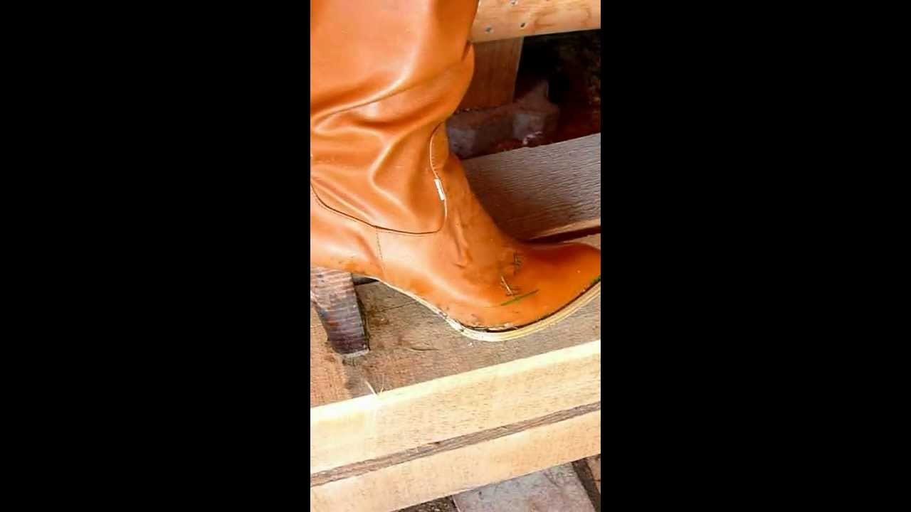 Trample boot lick video 12