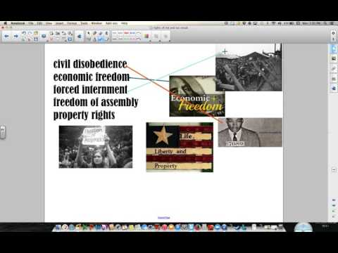 Rights of Individuals and Society Vocabulary Video