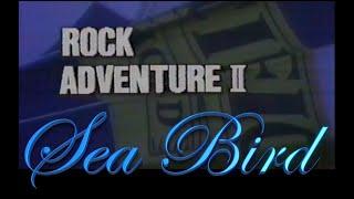 RockAdventureⅡ #SeaBird