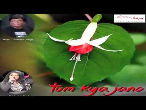 Hindi songs album Indian love latest best music album Bollywood New videos