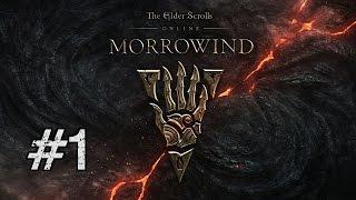 Let's Play Elder Scrolls Online: Morrowind BLIND [Part 1] MORROWINDS BACK!