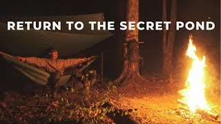 Return To The Secret Pond - Solo Camping, Hobo Reel Fishing, Bushcrafting and Campfire Chat