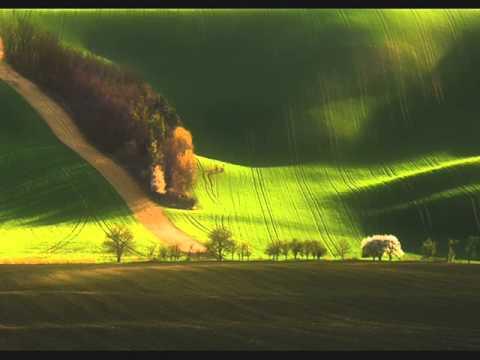 Greenfields (Instr. cover) - Molnár László, Kecskemét