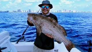 Black Grouper - Catch Clean &amp Cook - EASY Recipe with AMAZING Results - Florida Fishing