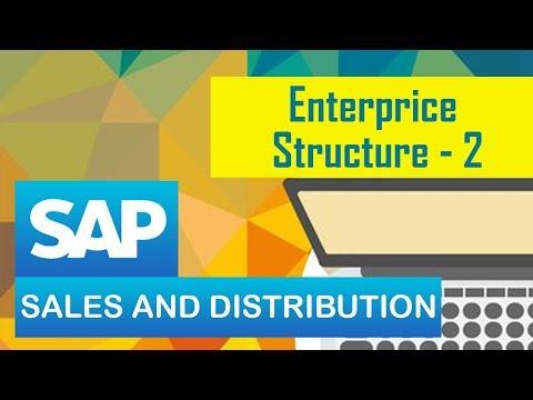 SAP Sales & Distribution/ Enterprise Structure (part 2).