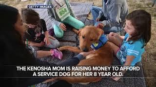 Kenosha mother hopes service dog will keep her son alive