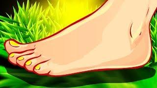 Cara deteksi penyakti dari telapak kaki, cek segera telapak kaki sahabat halosehat ya. Beberapa kemu.