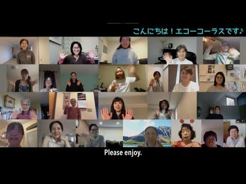 Echo Chorus   Japan Fair 2021   Video Premiering Channel