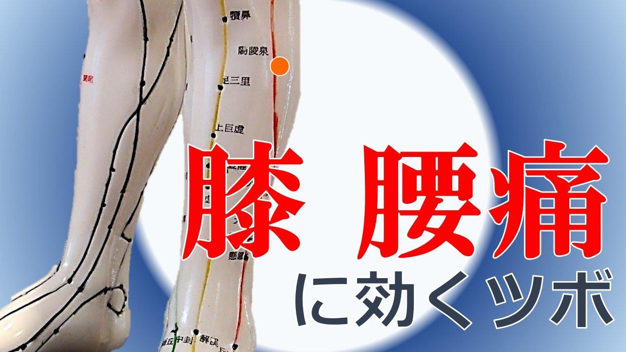膝 の 痛み に 効く ツボ