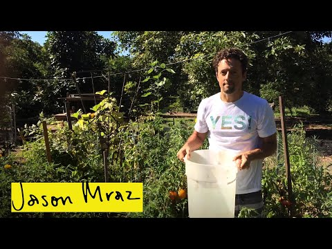 ALS Ice Bucket Challenge | Jason Mraz