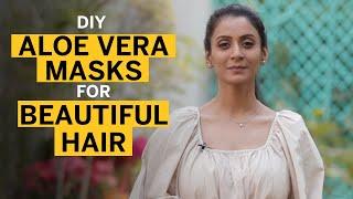 Easy DIY Aloe Vera Hair Mask for Long &amp Beautiful Hair  Fit Tak