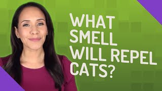 What smell will reṗel cats?