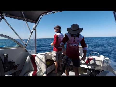 Perth Metro Fishing