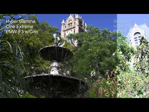 Sony PMWF3 HyperGamma Comparison