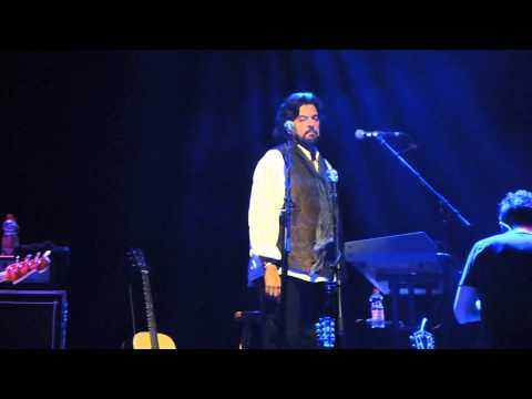Alan Parsons Live Project | Live | 2015 | Mosbach | Days are numbers